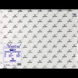 CANSON夢法蘭水彩畫紙300g 550x750mm #0801104B(每張)